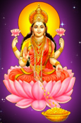 Best Astrologer Online India